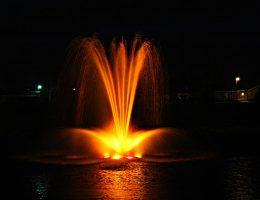 Bayside_5HP_Night